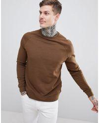 ASOS - Sweatshirt In Brown - Lyst