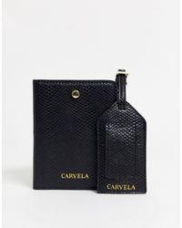 Carvela Kurt Geiger Черная Обложка Для Паспорта -черный
