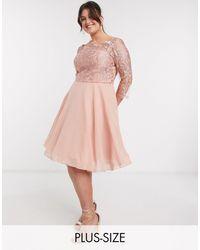 Chi Chi London Золотисто-розовое Платье Для Выпускного С Кружевной Отделкой Chi Chi Curve-золотой - Розовый