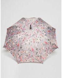Cath Kidston - Kensington 2 British Birds Gray Umbrella - Lyst