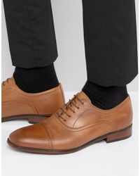 Red Tape - Toe Cap Oxford Shoes In Tan Leather - Lyst