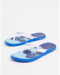 Ipanema Posto Palm Flip Flop - Blue