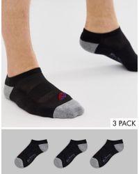 Ben Sherman 3 Pack Sport Liner Socks - Black