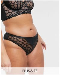 Figleaves Womens Darcy Spot Embroidery Underwired Bra