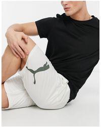 PUMA Training - Shorts - Grijs