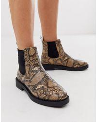 ASOS Auto - Chelsea Boots Met Dikke Zool En Slangenprint - Bruin