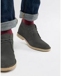 ASOS Desert Boots Van Suède - Grijs