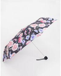Fulton Minilite Sketched Bouquet - Paraplu - Meerkleurig