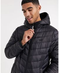 Hollister Cosy Lined Hooded Puffer Jacket - Black