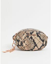 ALDO – Graber – Runde Tasche mit Tiermuster - Mehrfarbig