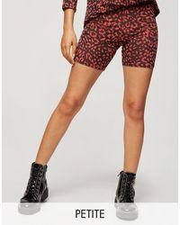 Miss Selfridge legging Shorts - Black