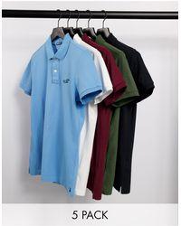 Hollister Набор Из 5 Футболок-поло Из Пике С Логотипом (белая/бордовая/синяя/оливковая/черная) -многоцветный - Синий