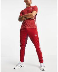 adidas Originals Красные Спортивные Джоггеры С 3 Полосками Adidas Training-красный
