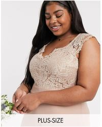 TFNC London Bridesmaid Plus Scalloped Lace Top Dress - Brown