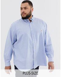 Polo Ralph Lauren Big & Tall - Camicia Oxford blu con colletto button-down e logo