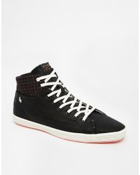 Fish 'n' Chips - Fish & Chips By Base London Hi-tops - Lyst