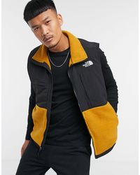 The North Face Jack - Bruin