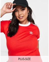 adidas Originals Plus - Adicolor - T-shirt Met 3-stripes - Rood