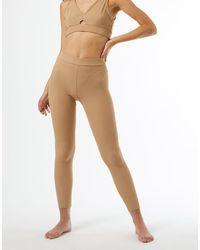 Miss Selfridge Active Ribbed legging Tan-brown