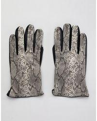 ASOS – Kunstlederhandschuhe mit Schlangenlederdesign - Mehrfarbig