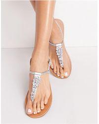 Miss Selfridge Elis Sandal - Metallic