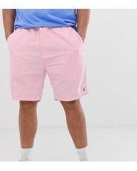 Polo Ralph Lauren Big & Tall - Prepster - Chino rosa con logo