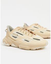 adidas Originals Песочно-бежевые Кроссовки Ozweego Celox-бежевый - Естественный