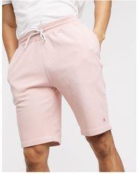 Calvin Klein Розовые Трикотажные Шорты С Вышивкой -розовый Цвет