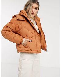 TOPSHOP Padded Coat - Brown