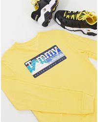 Tommy Hilfiger Maglia a maniche lunghe gialla con stampa con montagne sul retro - Giallo