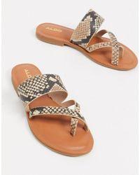 ALDO Toe Loop Sandals - Natural