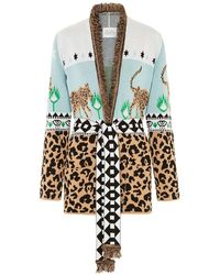 Hayley Menzies Leopardess Short Cardigan - Ice Blue