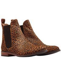 Joules Ladies Westbourne Premium Chelsea Boots - Brown