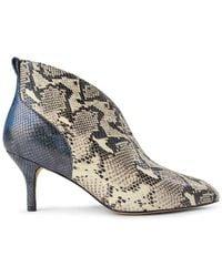 Shoe The Bear Valentine Leather Low Cut Snake Bootie - Multicolour
