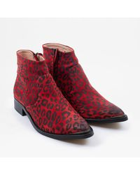 Sneaky Steve | Electric W | Suede | Red Leopard