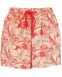 Ichi Civaz Shorts - Red