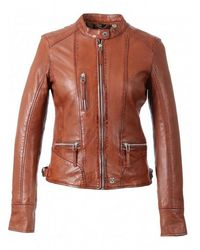 Oakwood Wild Each Mandarin Collar Leather Jacket - Brown