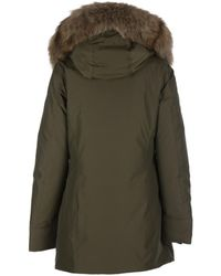 Woolrich Ws Artic Parka Fr Army Olive - Green