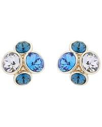 Ted Baker Lynda Earrings - Blue