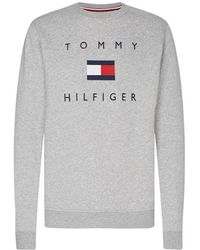 Tommy Hilfiger Jumpers - Blue