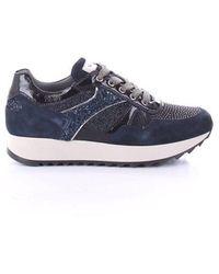 Nero Giardini Faux Leather Sneakers - Blue
