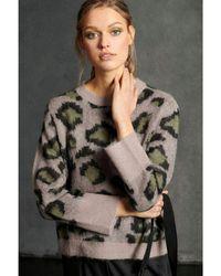 Luisa Cerano Knitted Leopard Jacquard Sweater 10, - Multicolor