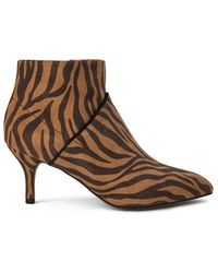 Shoe The Bear Valentine Zebra In Brown