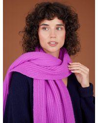 Cocoa Cashmere Ellery Ribbed Bromo Scarf - Purple