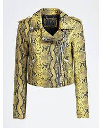 Guess Python Print Faux Leather Biker Jacket - Yellow