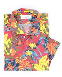 Aglini Shirts Short Sleeve Shirts Men Fantasy - Multicolour