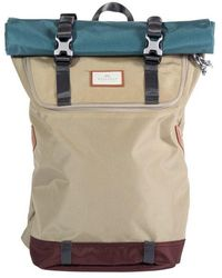 Doughnut Christopher Glossy Beige X Teal - Multicolor