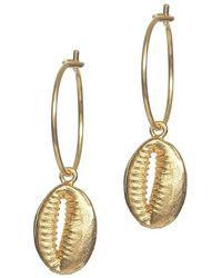 Anni Lu - Cowry Shell Hoop Earrings - Lyst