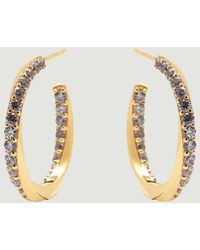 P D Paola Cavalier Gold Plated Silver Hoop Earrings Cavalier Pdpaola - Metallic