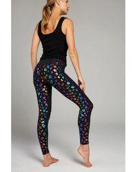 Terez Rainbow Cheetah Foil Tall Band Leggings - Blue